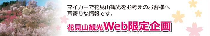 花見山観光Web限定企画