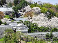 二本松観光 高湯発3.5時間コース